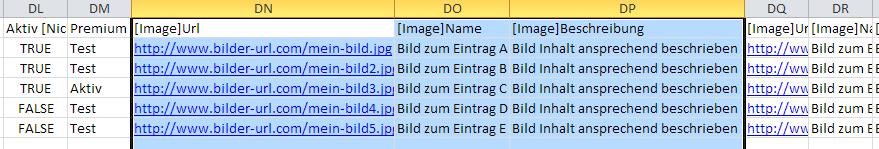Beispiel für Bild Import Triplet bei discoverize - Portal Software