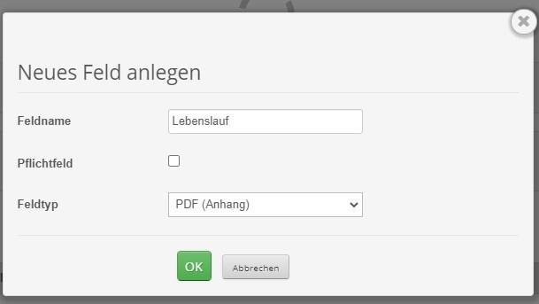 PDF (Anhang)-Feld im individuellen Anfrageformular anlegen